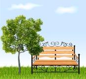 Banco com árvore e grama. Ilustração do vetor ilustração do vetor
