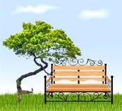 Banco com árvore e grama Ilustração do vetor ilustração royalty free
