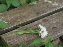 Banco com ramalhete da flor Fotos de Stock Royalty Free