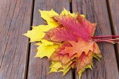 Banco con las hojas de arce caidas en parque del otoño Foto de archivo libre de regalías