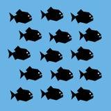 Banco de areia da piranha Imagem de Stock