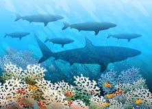 Banco de areia do tubarão da natação ilustração stock