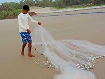 Banco de areia dos peixes travados na rede imagem de stock royalty free