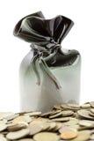 Banco de economias com moedas Imagem de Stock Royalty Free
