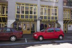 Banco de la semilla del cáñamo en Amsterdam imagen de archivo