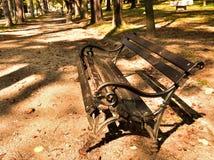 Banco de madeira Imagem de Stock Royalty Free
