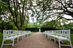 Banco de madeira branco no parque tropical calmo Imagens de Stock Royalty Free