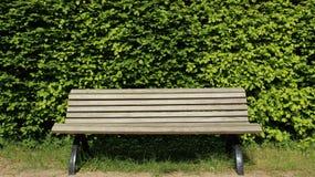 Banco de madeira com cercas verdes fotografia de stock royalty free