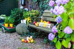 Banco de madeira com frutos e flores imagens de stock royalty free