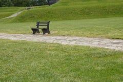 Banco de madeira com grama verde no parque Foto de Stock