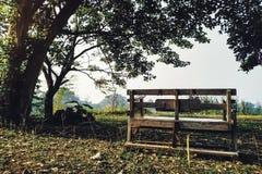 Banco de madeira no parque imagem de stock