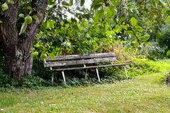 Banco de madeira velho no jardim fotos de stock