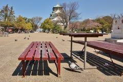 Banco de madera cerca del castillo de Kyoto Foto de archivo