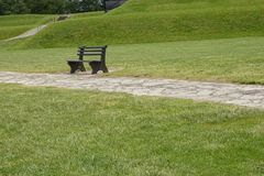 Banco de madera con la hierba verde en parque Foto de archivo