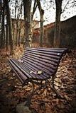 Banco de madera con las hojas de otoño Fotos de archivo