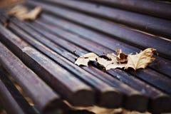 Banco de madera con las hojas de otoño Imagen de archivo