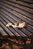 Banco de madera con las hojas de otoño Fotografía de archivo