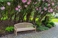 Banco de madera del jardín debajo de los arbustos de Rhododenron Imagenes de archivo
