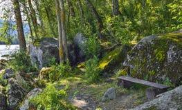 Banco de madera en el banco del río en la sombra de árboles Fotos de archivo libres de regalías