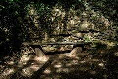 Banco de madera en el fondo de los árboles de abedul del otoño Imagenes de archivo