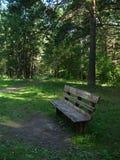 Banco de madera en el parque foto de archivo libre de regalías