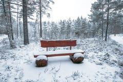Banco de madera en el parque del invierno Foto de archivo