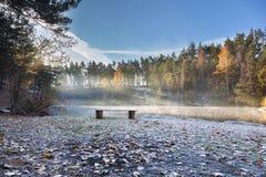 Banco de madera en la orilla del lago del bosque Fotografía de archivo