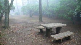 Banco de madera en parque brumoso Imagen de archivo