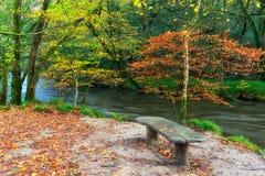 Banco de madera por el río Fotos de archivo libres de regalías