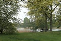 Banco de madera que pasa por alto un lago tranquilo de la primavera Fotografía de archivo