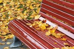 Banco de madera rojo oscuro con las hojas de arce secas en otoño Fotografía de archivo libre de regalías