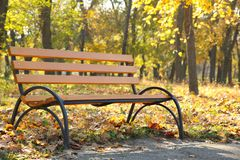 Banco de madera vacío en el parque otoñal imagen de archivo libre de regalías