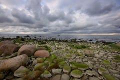 Banco de mar rochoso Imagens de Stock