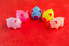 Banco de moneda plástico colorido de los cerdos Foto de archivo libre de regalías