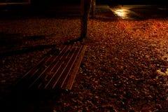 Banco de parque atmosf?rico en la noche con las hojas de oto?o fotografía de archivo