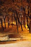 Banco de parque del otoño. Lanzamiento de la noche Fotografía de archivo