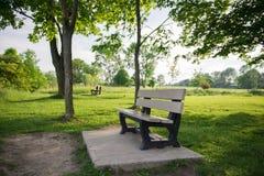 Banco de parque en área de la naturaleza Fotos de archivo libres de regalías
