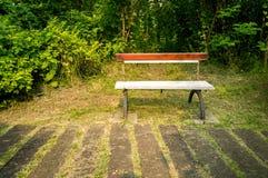Banco de parque en jardín Foto de archivo libre de regalías