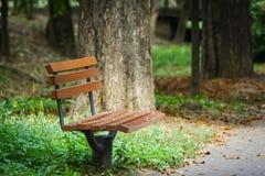 Banco de parque en otoño Fotografía de archivo libre de regalías