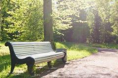 Banco de parque en otoño Foto de archivo