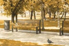 Banco de parque en otoño Imágenes de archivo libres de regalías