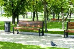 Banco de parque en otoño Fotos de archivo