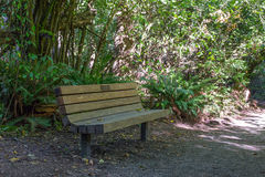 Banco de parque a lo largo de un rastro del pie Fotografía de archivo libre de regalías
