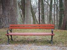 Banco de parque de madera en el otoño, solamente, vacío imagen de archivo
