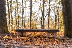 Banco de parque de madera vacío en el parque en el tiempo de la puesta del sol de la caída, enmarcado Imágenes de archivo libres de regalías