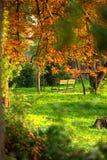 Banco de parque no outono   Fotografia de Stock