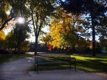 Banco de parque no parque do outono imagens de stock royalty free