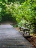 Banco de parque vacío a lo largo del camino de madera en verano fotos de archivo
