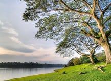 Banco de parque vacío en orilla del lago en la puesta del sol Foto de archivo libre de regalías