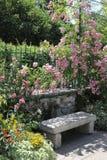 Banco de piedra entre rosas Imágenes de archivo libres de regalías
